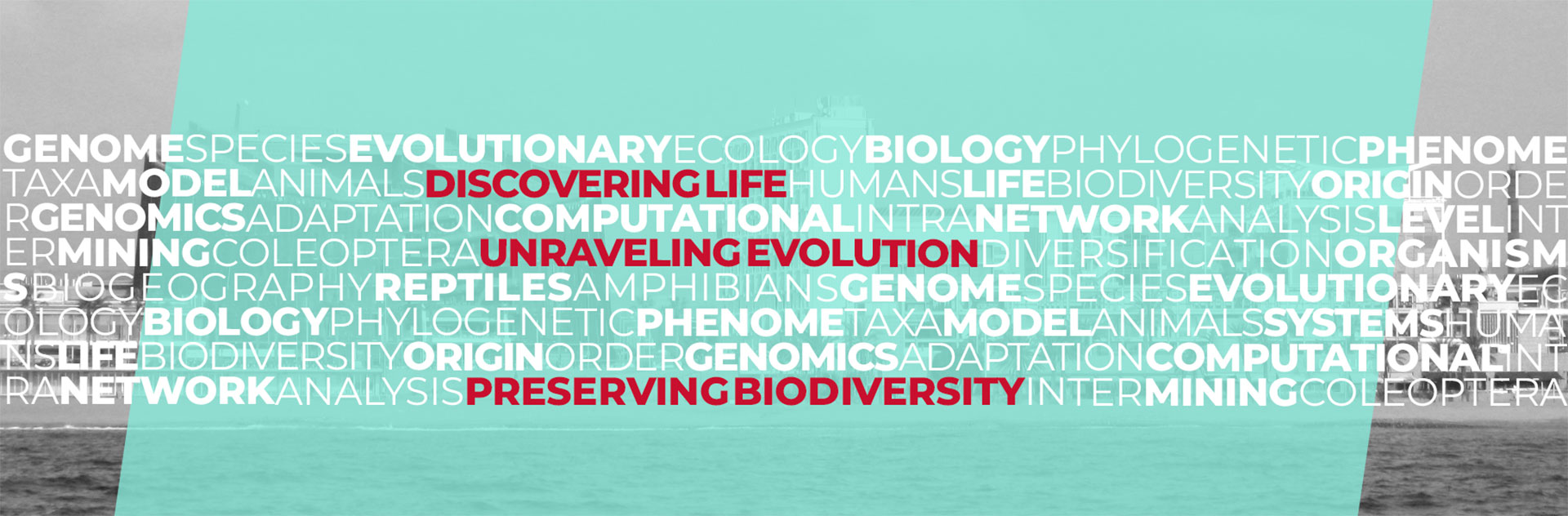 Discovering life - Unraveling Evolution - Preserving Biodiversity